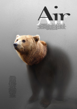 graphic design bear air